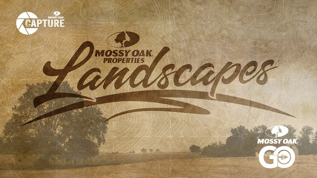 Mossy Oak Properties Landscapes