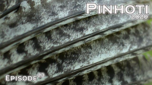 Pinhoti 2020 Ep 43 • Pinhoti Project