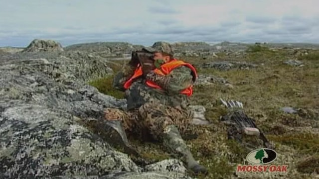 Stop or I'll Shoot • Caribou Hunting in Canada