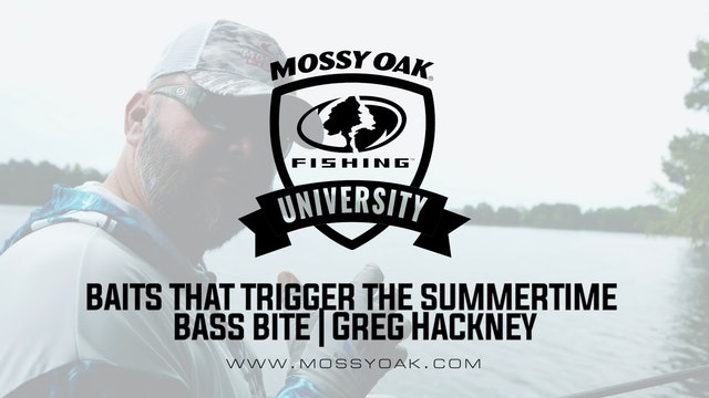 Bass Lures That Trigger the Summer Bite - Greg Hackney