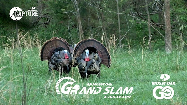 Grand Slam • Episode 4 • Easterns