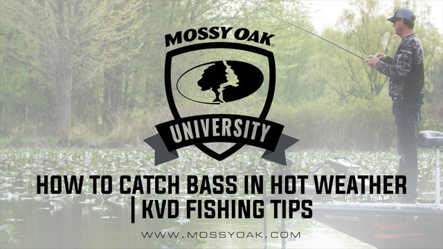 How to Catch Bass in Hot Weather • KVD Fishing Tips