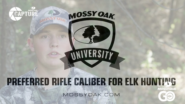 Preferred Rifle Caliber for Elk Hunting • Mossy Oak Univeristy