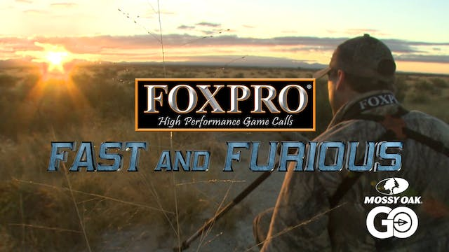 FOXPRO 1103 Arizona • Fast and Furious