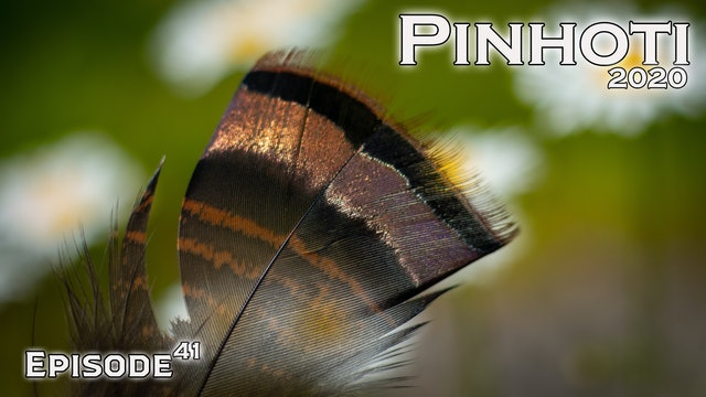 Pinhoti 2020 Ep 41 • Pinhoti Project