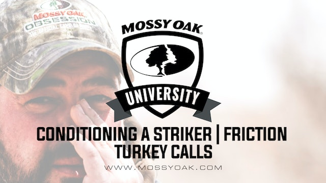 How to Condition a Turkey Call Striker • Friction Call Maintenance