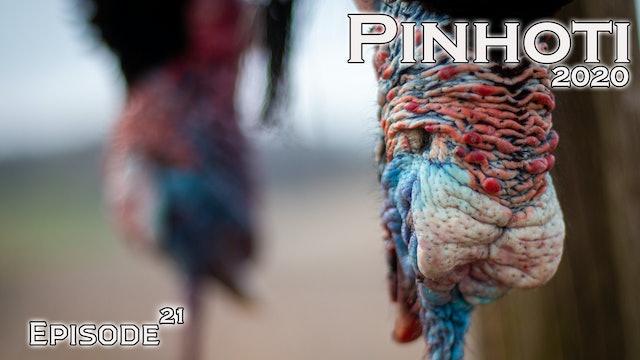 Pinhoti 2020 Ep 21 • Pinhoti Project