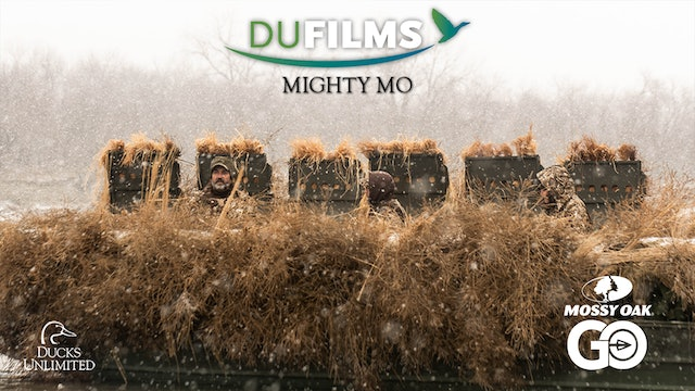 Mighty MO • DU Films