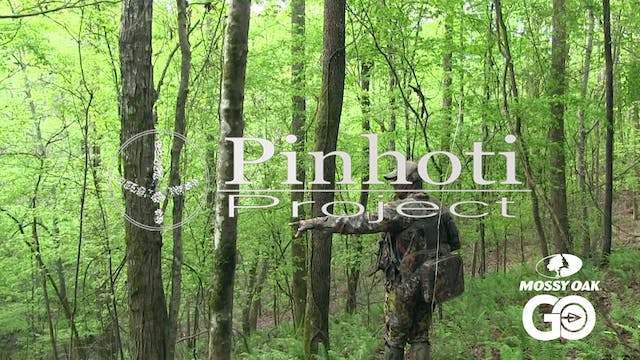 Late April Turkey Hunt • Pinhoti Proj...