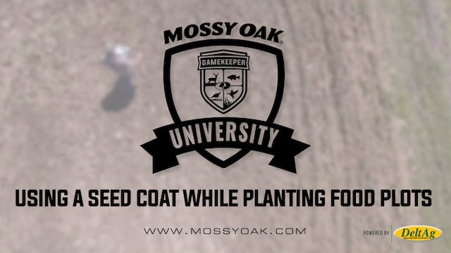 Using a Seed Coat While Planting Food...