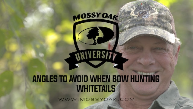 Angles To Avoid When Bow Hunting Whitetails • Mossy Oak University