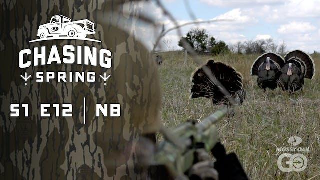 Ep 12 · NE · Chasing Spring