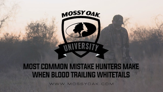 Biggest Mistake Hunters Make When Blood Trailing a Deer