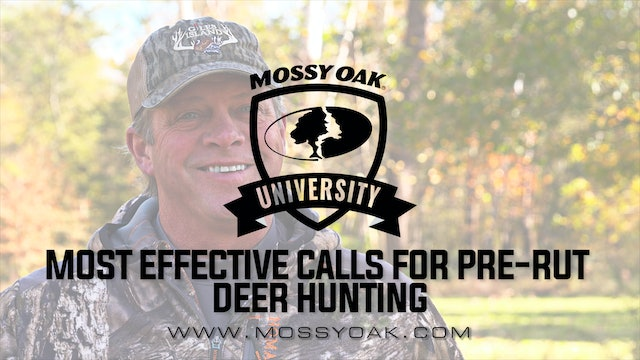 Pre-Rut Deer Calling Tactics | What Calls Work Best