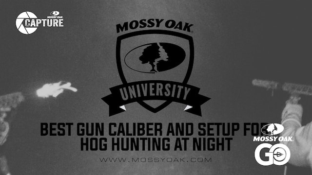 Weapon Of Choice For Hog Hunting With Thermal Night Vision.Mp4