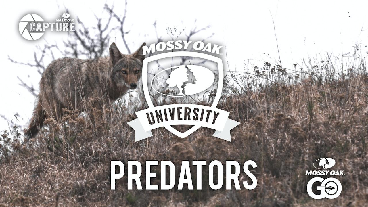 Predator •  Mossy Oak University