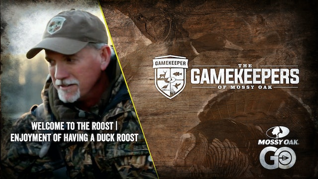 Welcome to the Roost, Baby • The Enjoyment of Having a Duck Roost