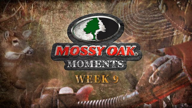 Live: 11.2.2020 Mossy Oak Moments Replay