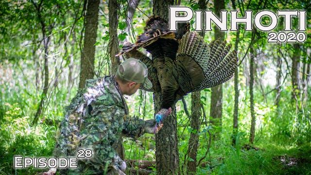 Pinhoti 2020 Ep 28 • Pinhoti Project
