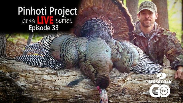 Kinda Live • Episode 33 • Pinhoti Pro...