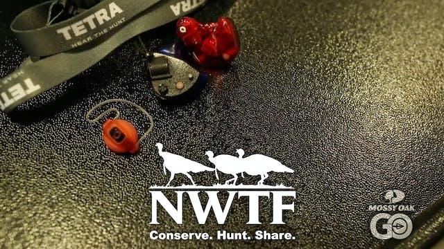 Tetra • Amp Pods • NWTF 2020