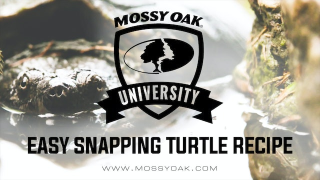 How To Cook A Snapping Turtle | Turtle Recipe