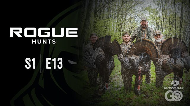 Rogue Hunts • S1 Ep13 • PA