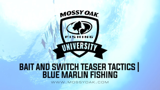 Bait and Switch Teaser Tactics • Mossy Oak University