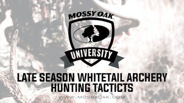 Late Season Whitetail Archery Tactics