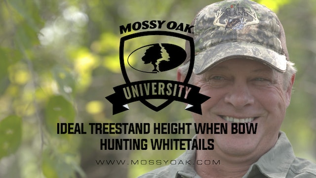 Ideal Treestand Height When Whitetail Hunting With A Bow • Mossy Oak University