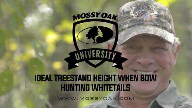 Ideal Treestand Height When Whitetail...