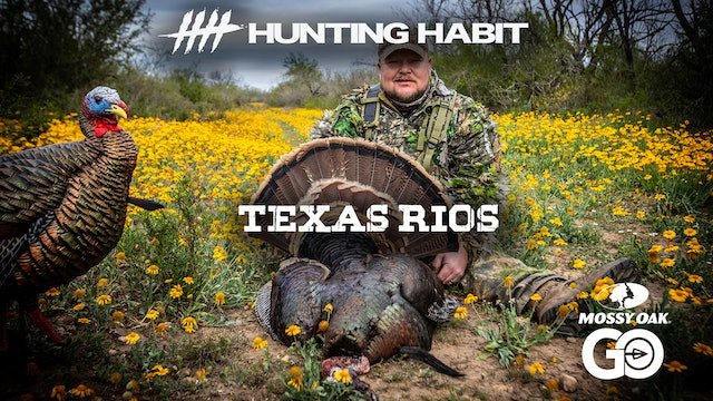 Hunting Habit · Texas Rios