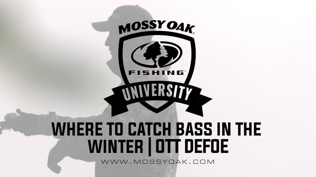 Where to Catch Bass in the Winter - Ott DeFoe Fishing Tips
