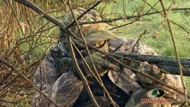 Iowa Gobblers • Hunting Gobblers in Iowa
