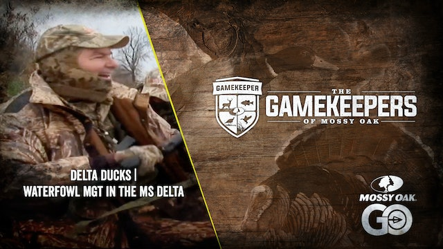 Delta Ducks • Waterfowl Management in the MIssissippi Delta