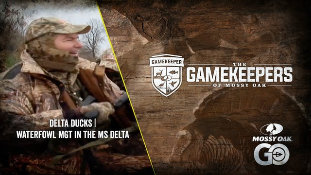 Delta Ducks • Waterfowl Management in...