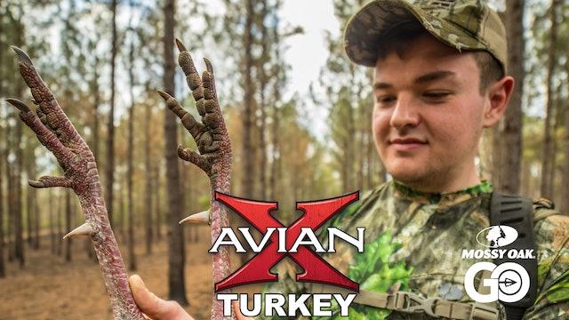 Dixie Land • Avian X