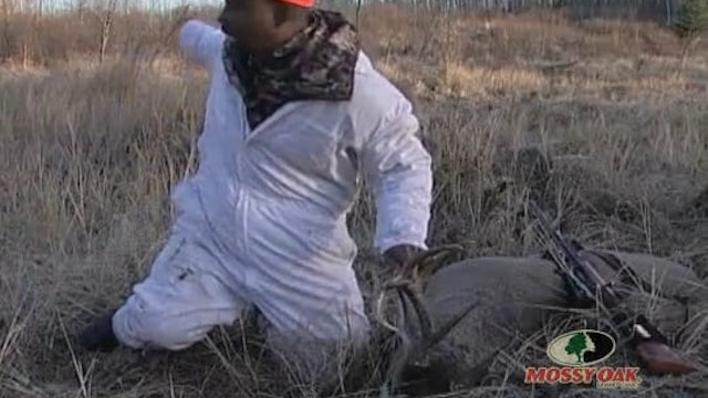Long Range Whitetails • Hunting Whitetail in Texas and Canada
