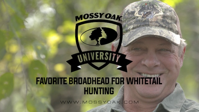 Favorite Broadhead for Whitetail Hunting • Mossy Oak University