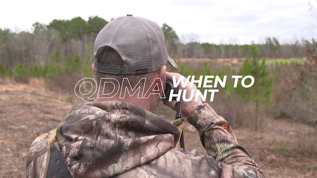 When to Hunt
