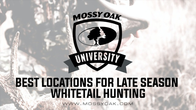 Best Locations For Late Season Whitetail Hunting