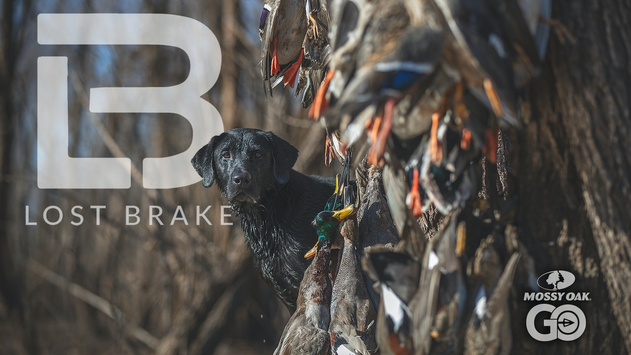 Lost Brake - A Mossy Oak Waterfowl Series