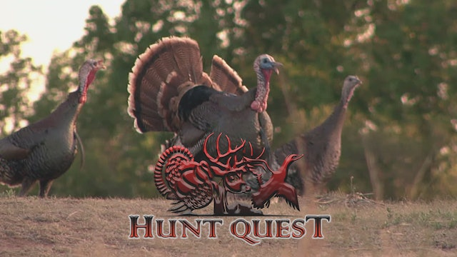 Texas Rio Grandes • Hunt Quest