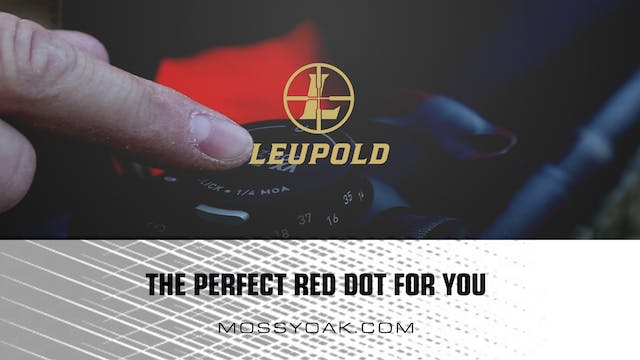 The Perfect Red Dot for You • Product...