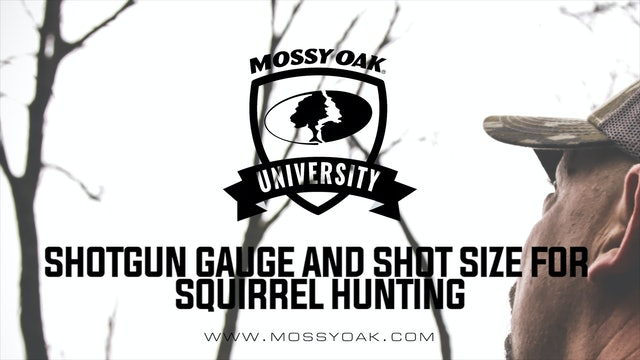 Shotgun Gauge And Shot Size For Squirrel Hunting