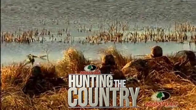 Ducks Y'all • Waterfowl Hunting in Canada
