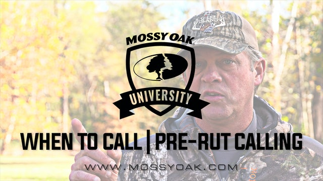 When Should You Call During Pre-Rut