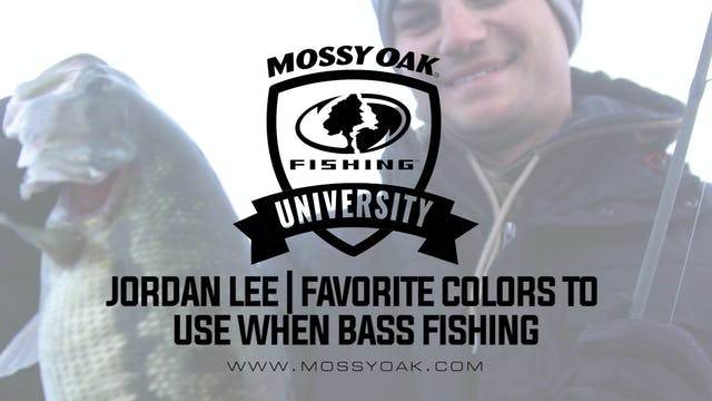 Favorite Colors To Use When Bass Fishing