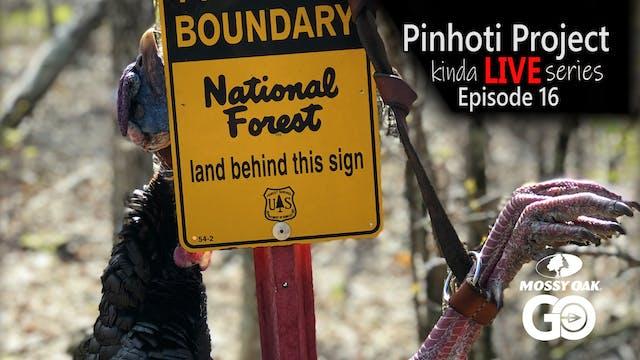 Kinda Live • Episode 16 • Pinhoti Pro...