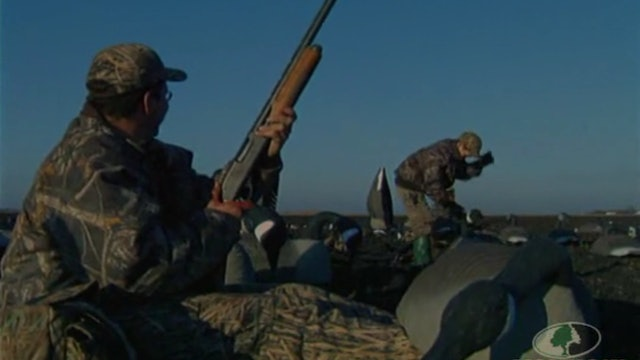 Delta Waterfowl Goose Hunt 1